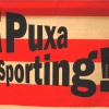 Este domingo veremos al Sporting conseguir su permanencia en la CdA