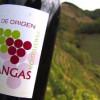 18/11/17 – Cata de vinos de Cangas en la CdA